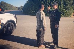 Man under the influence arrested after bizarre encounters with motorists