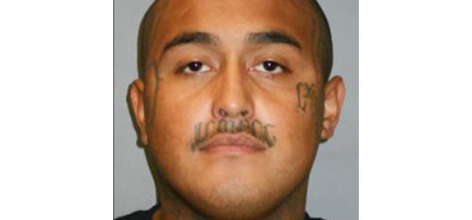 $2 million Bail for Alleged Gangster-Killer