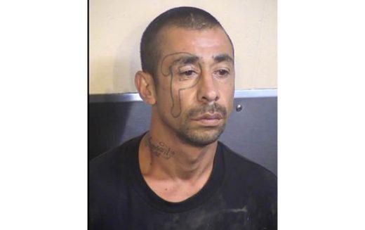 Marijuana Thieves Duped by Hemp