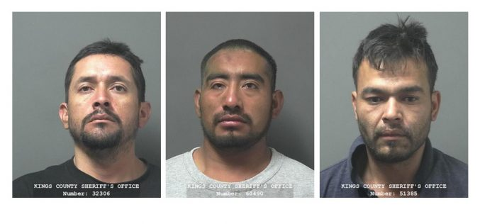 Suspects stole hemp plants thinking it was weed, led deputies on 100 MPH chase