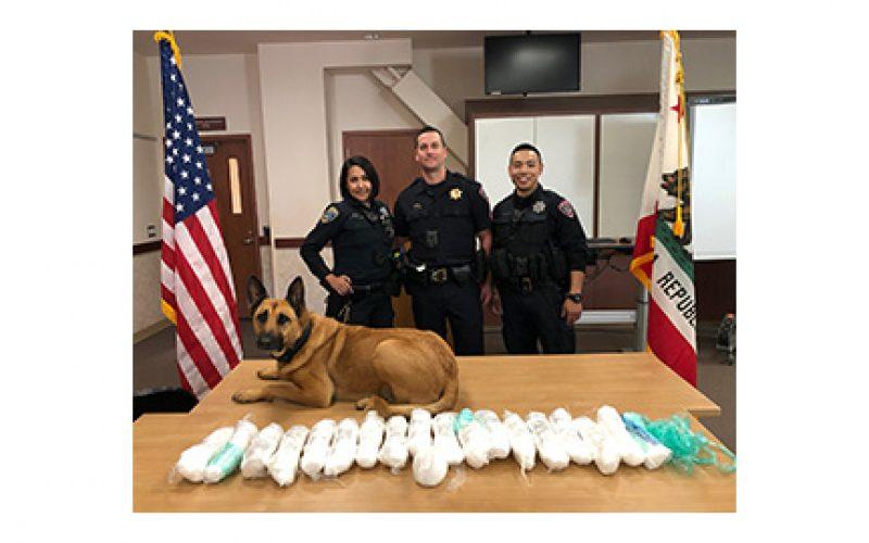 Driver caught transporting $160,000 worth of methamphetamine