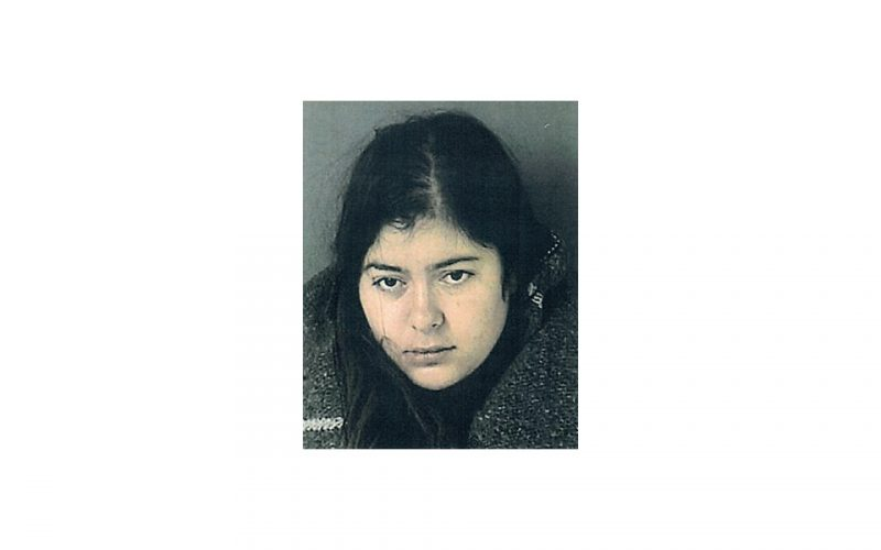 Woman booked for DUI, hit and run, child endangerment, assault on officer
