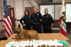 San Mateo man caught with almost 23 pounds of meth