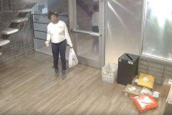 Berkeley Police seek identity of apartment building package thief