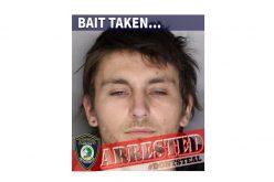 Citrus Heights PD announces arrest in bait operation