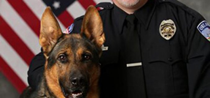 Welcome to the Orland PD, K9 Dutch