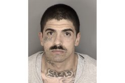 Salinas Police arrest parolee on suspicion of attempted murder