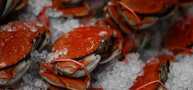 San Joaquin County Sheriff's Office announces Crab Feed fundraiser