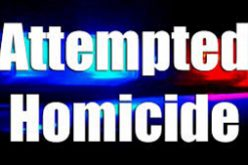 Police Asking for Assistance in Investigating an Attempted Murder