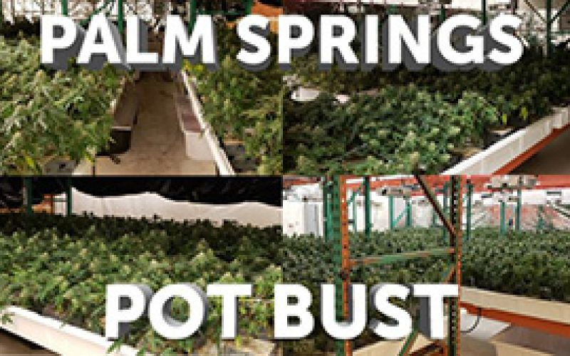 2 New Yorkers Arrested for For Illegal Cannabis Business in Palm Springs