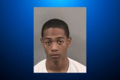 18-Year-Old Man Faces Charges for Attacking 12 Persons with Paintball Gun
