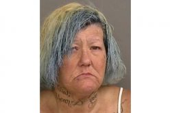 Santa Cruz police issue press release on woman suspected of construction site theft