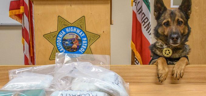 CHP K-9 discovers drugs during enforcement stop; driver arrested