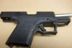 Milpitas PD alerted to altercation, confiscates gun