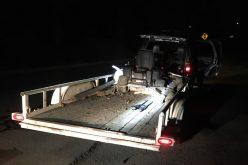 Deputies: Recently-released vehicle theft suspect caught towing stolen trailer, mower