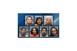 Meat Trail Leads Officers to 13 Suspects