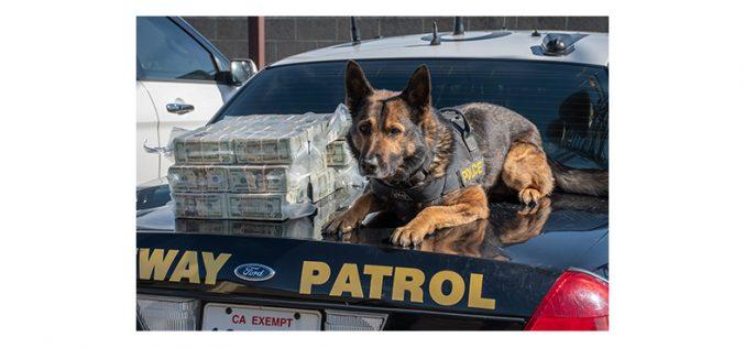 K9 Beny and his handler spot $600,000 in car