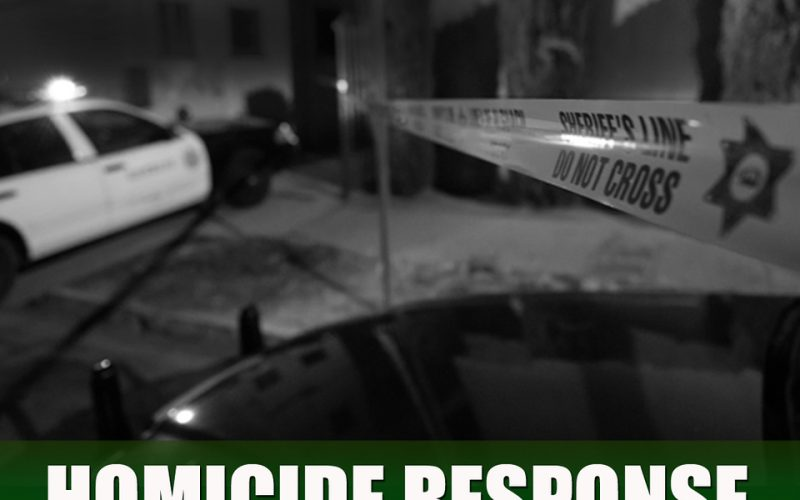 911 Domestic-Violence Call Response – Suspect Attempts to Gain Control of Deputy's Firearm
