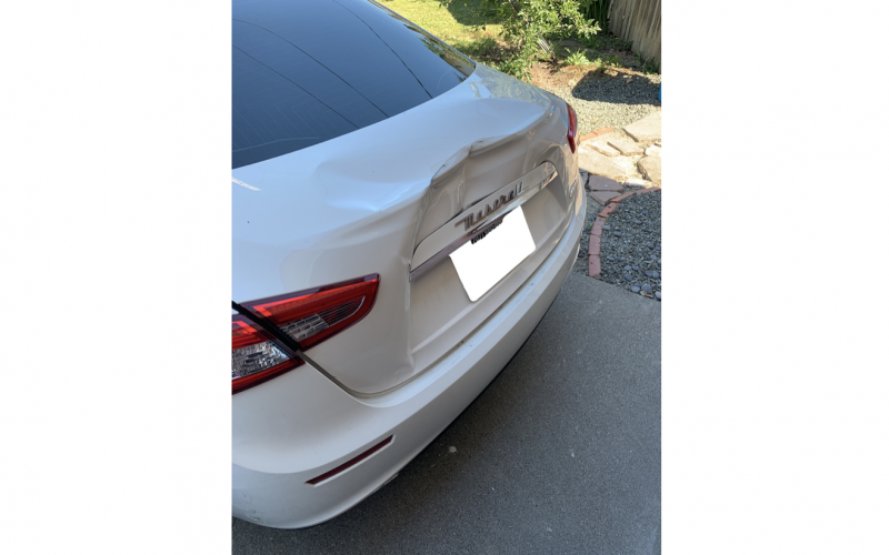 Motorist allegedly retaliates against pedestrian by striking him and his dog with car