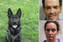 K9 Ziden helps sniff out narcotics from Ione pair