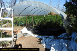 Calaveras County Marijuana Enforcement serves four warrants, arrests two