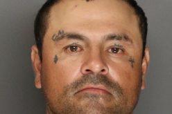 Galt PD relieve suspect of gun, ammo, meth
