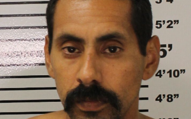 Police Arrest Four During Search for One Wanted Fugitive