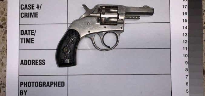 Convicted felon allegedly caught with unregistered firearm during enforcement stop