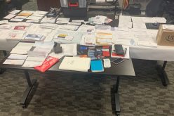 Pair of suspects steal lots of mail and packages