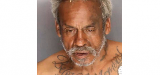 Stockton man accused of assaulting wife, stabbing Sheriff's K-9 during arrest