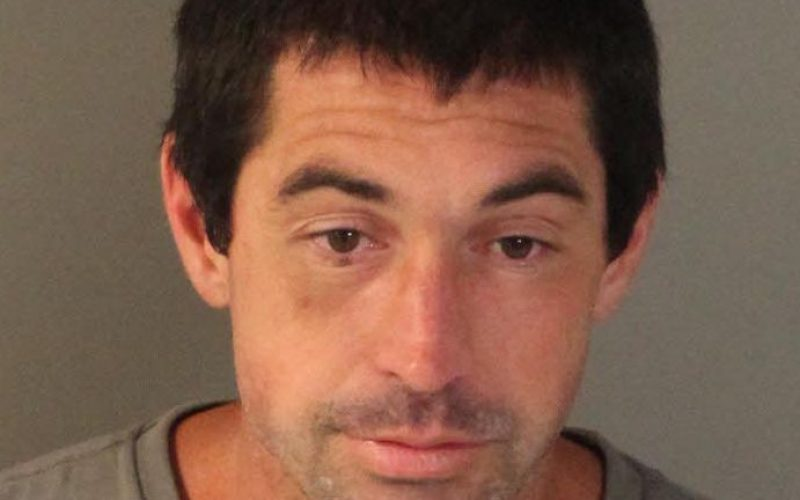 Parolee nabbed with meth, gun, ammo