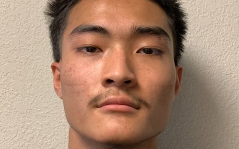 Arrests made in homicide investigation