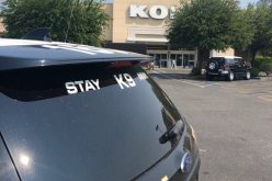 Cosmo Byrd robs Kohl's and is quickly caught