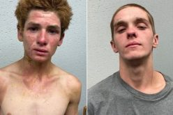 Two men arrested in homicide during attempted vehicle theft
