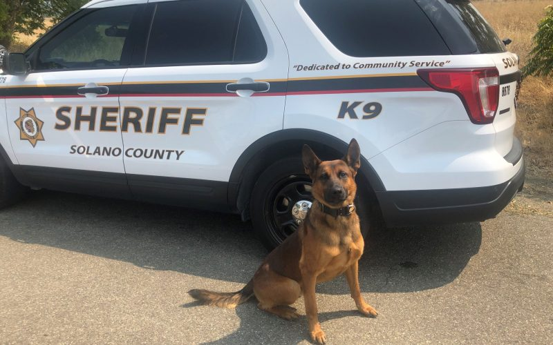 "Deputies: ""Ghost"" AR-15 found during K-9 search of vehicle"
