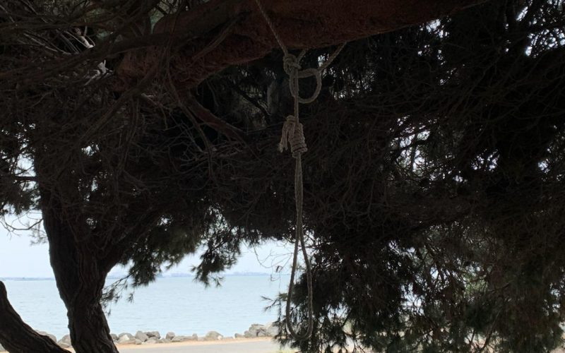 Man Faces Terrorism Charge for Hanging a Noose at Berkeley Marina