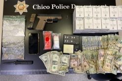 Chico PD: Brothers arrested after family fight on North Cedar Street
