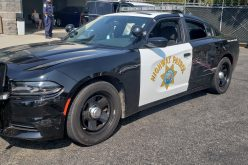 Hit and run leads to wild pursuit, arrest