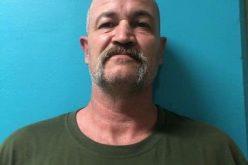 Man nabbed in stolen vehicle