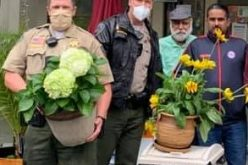 Theft of Potted Plants and Trash Bin Leads to Arrest of Man with Meth