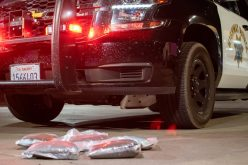 CHP K-9 Officer Beny continues hot streak with latest drug bust