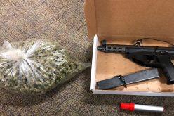 Vehicle check yields marijuana and stolen gun