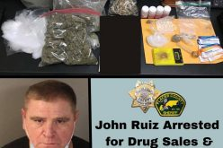 Offender nabbed with various drugs and paraphernalia