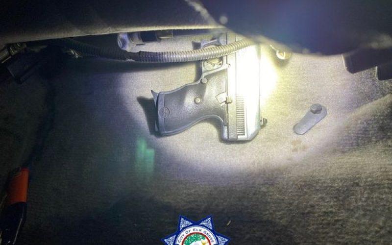 Parolee possessing meth, gun, burglary tools