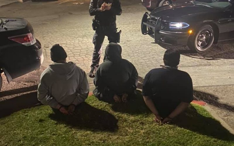 Two gang members arrested in gun and gang charges