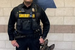 Sheriff's Office Adds Canine to Patrol Staff