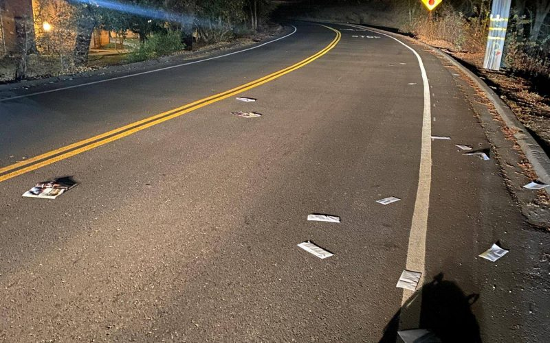 Mailbox thief throws mail out of his van