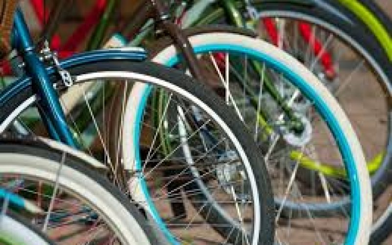 2 Suspected Bicycle Thieves Arrested by Special Operations Unit