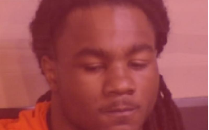 Double homicide Suspect In Custody