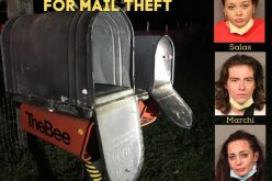 Trio of mail thieves caught and arrested